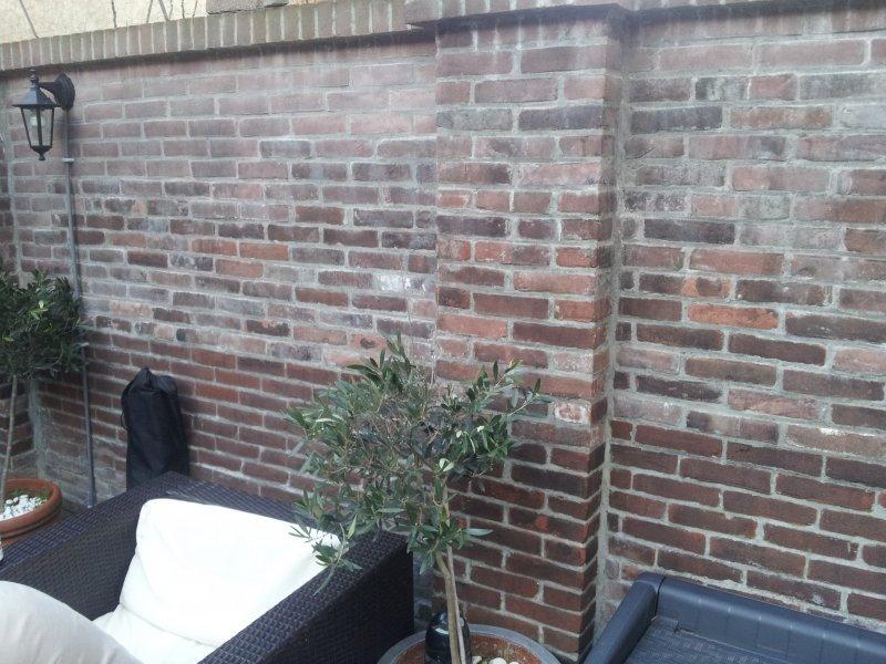 http://www.onderhoud-frankrijk.nl/wp-content/gallery/tuinmuur-renovatie-herstel-en-opnieuw-voegen-tuinmuur/20130414_185951.jpg